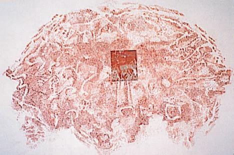 Giuseppe Penone, Paesaggio del cervello,(1990)